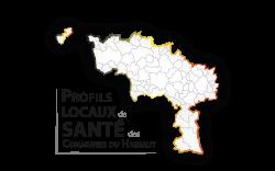 Profils locaux de santé