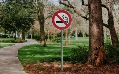 La gestion du tabac sur les territoires… Quelles actions?