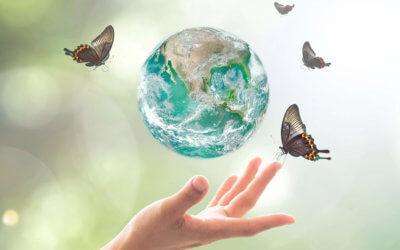 11 petits gestes pour notre santé et notre planète
